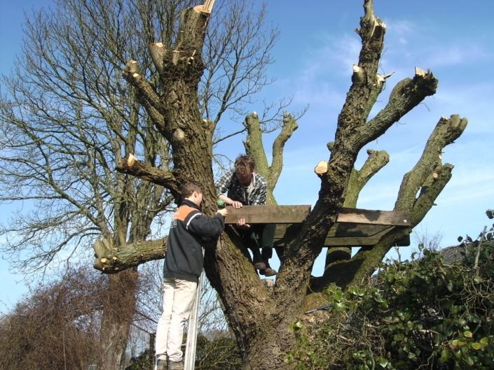 boomhut-bouwen-oudschoonhorst