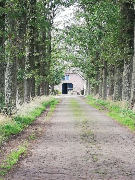 delaan-zorgboerderij-schoonhorst